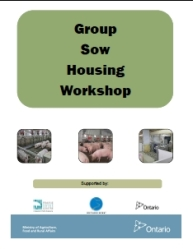 Sow Housing Workshop
